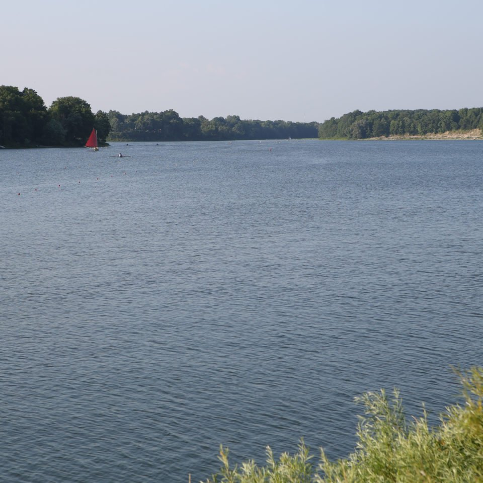 Rowing Club Representatives are Invited to Attend an Information Seminar on Changing Water Levels